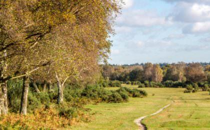 Herfstvakantie familietips in Engeland