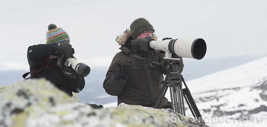 Corina en Marco fotograferen een muskusos kudde in Dovrefjell