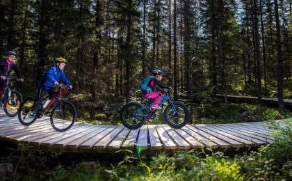Familie op fiets vakantie in Noorwegen
